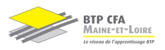 Logo BTP CFA 49